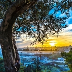 Beautiful,Sunset,View,Of,Jerusalem's,Old,City,Landmarks:,Temple,Mount